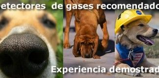 detectores_gases